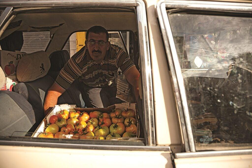 slideshow-scenes-from-palestine-tomatoes-1200x800