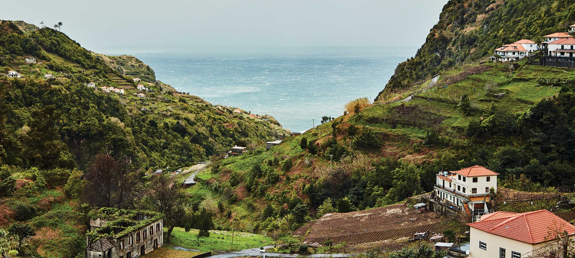 Wild Landscapes and Wilder Wines on the Island of Madeira