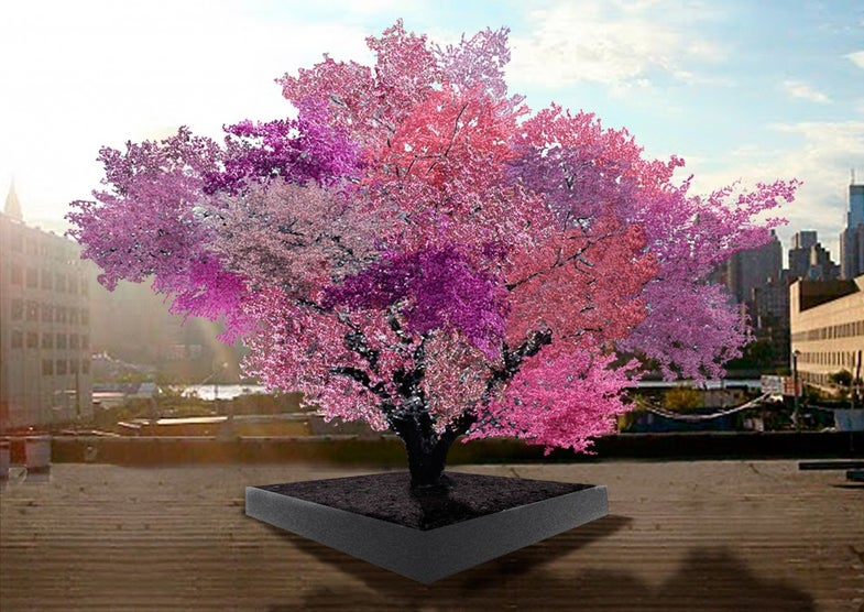 Weekend Reading: A Tree That Grows 40 Fruits, Jellied Eels, and More
