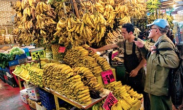 Great Markets in Mexico