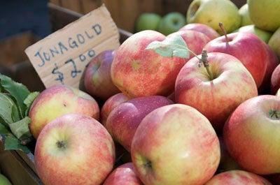 Tasting Notes: 18 Apple Varieties