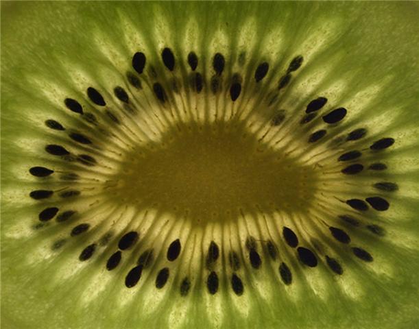 httpswww.saveur.comsitessaveur.comfilesimport2010images2010-0311963380-kiwi.jpg