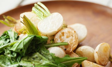 Turn up the Heat with These 19 Turnip Recipes