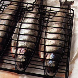 Something Fishy on the Grill
