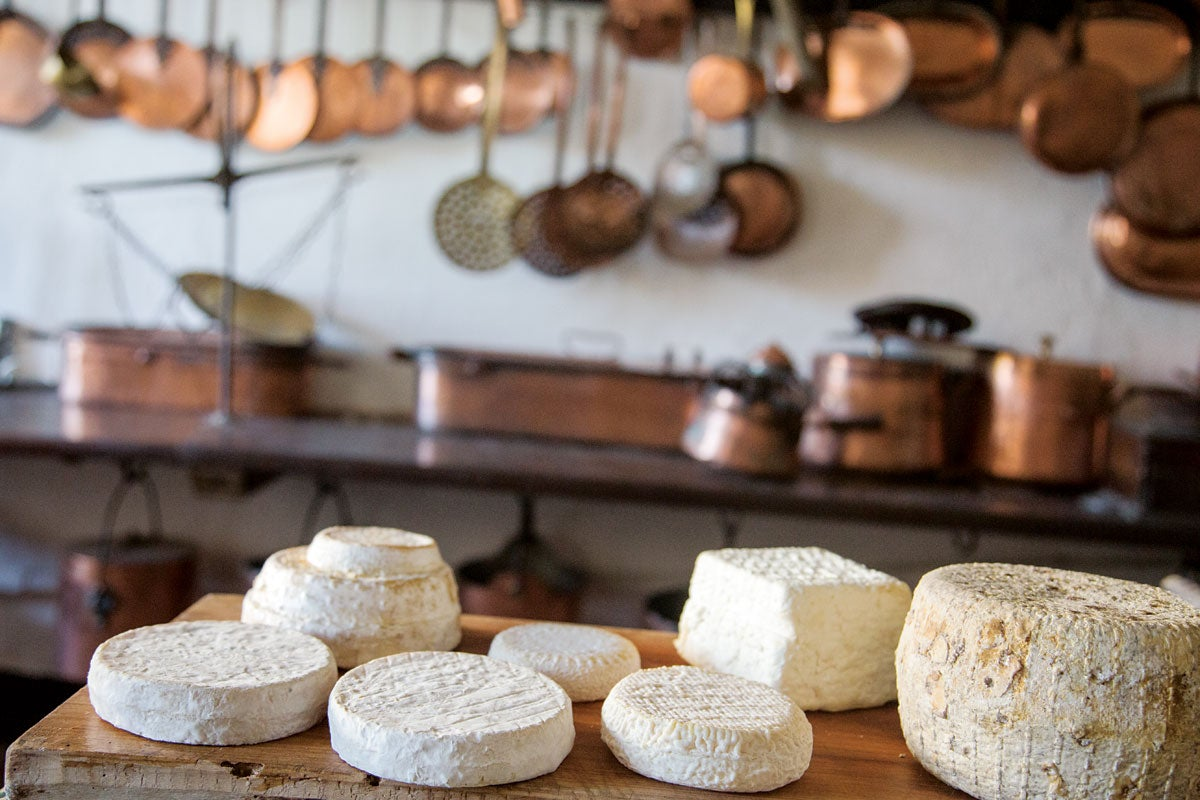 The Cheeses of Piedmont