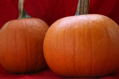 Weekend Reading: An Interview with Jonathan Gold, DIY Pumpkin Kegs, and More