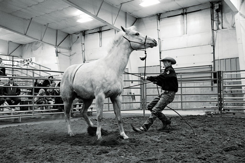 httpswww.saveur.comsitessaveur.comfilesimport2013images2013-077-kansas_roping-horse_1500x994.jpg