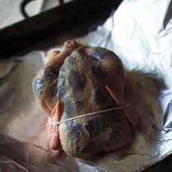 Truffled Chicken