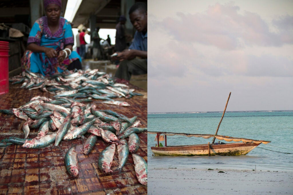 Fishing in Tanzania