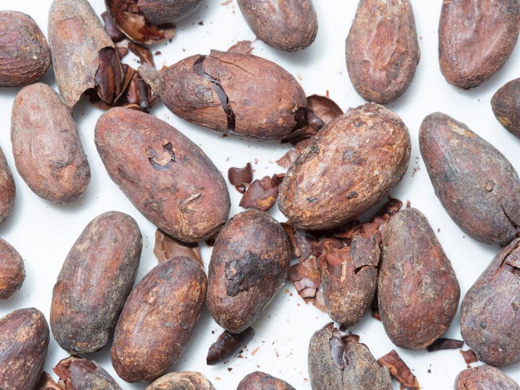 """""""Cacao"""