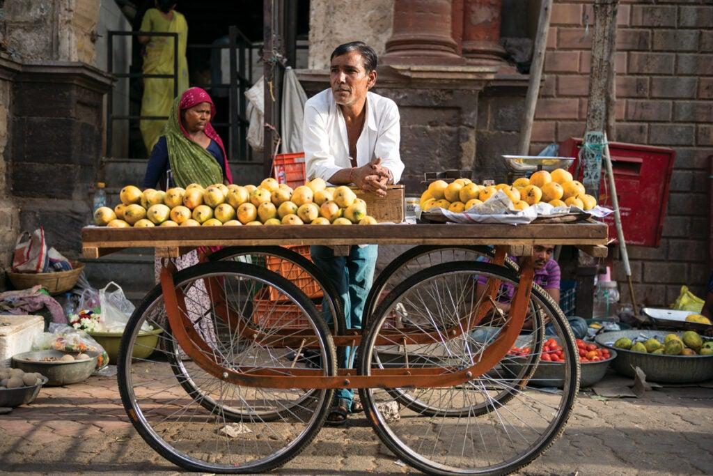 planning indian trip vendor