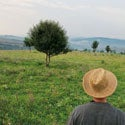 Thriving in the Transylvanian Countryside