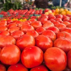 Scenes from the Sarasota Farmers Market