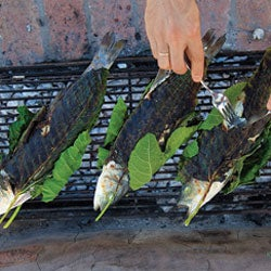 Menu: An Early Summer Dinner On The Grill