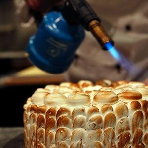 Torte 101