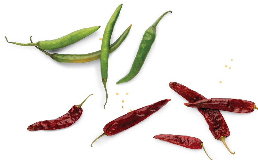 Indian green chiles and dried Kashmiri chiles