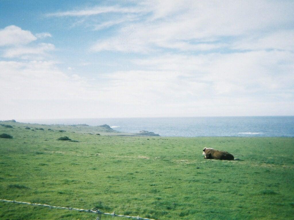 Cross Country Roadtrip