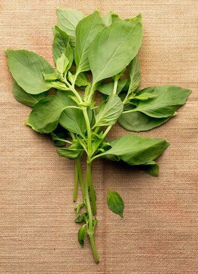 Non-Pesto Basil Recipes