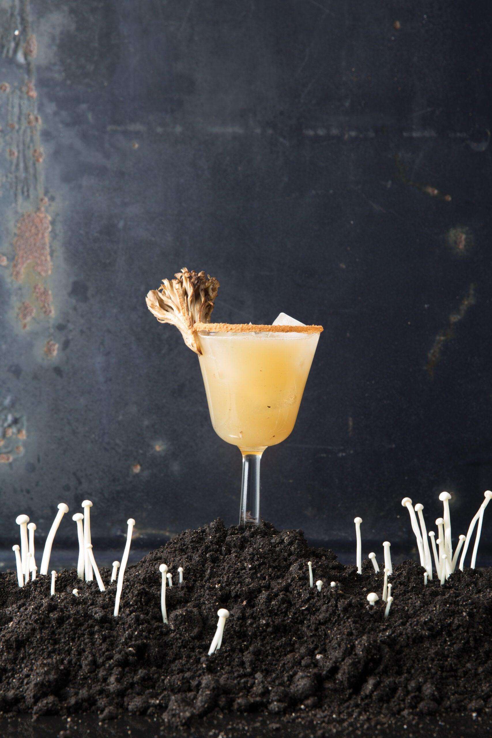 The Truffle Pig, Mushroom Cocktail