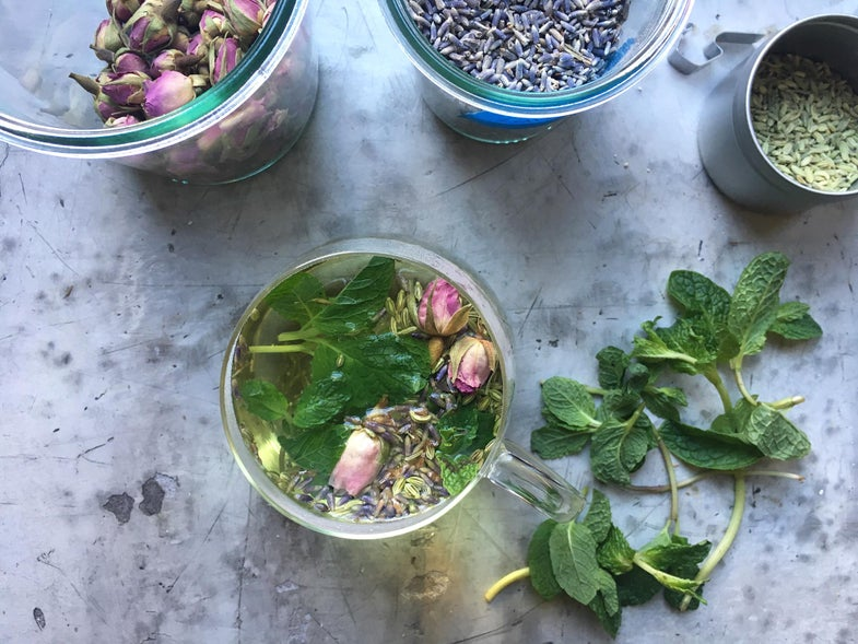 Fennel, Fresh Mint, Lavender, and Rose Herbal Tea