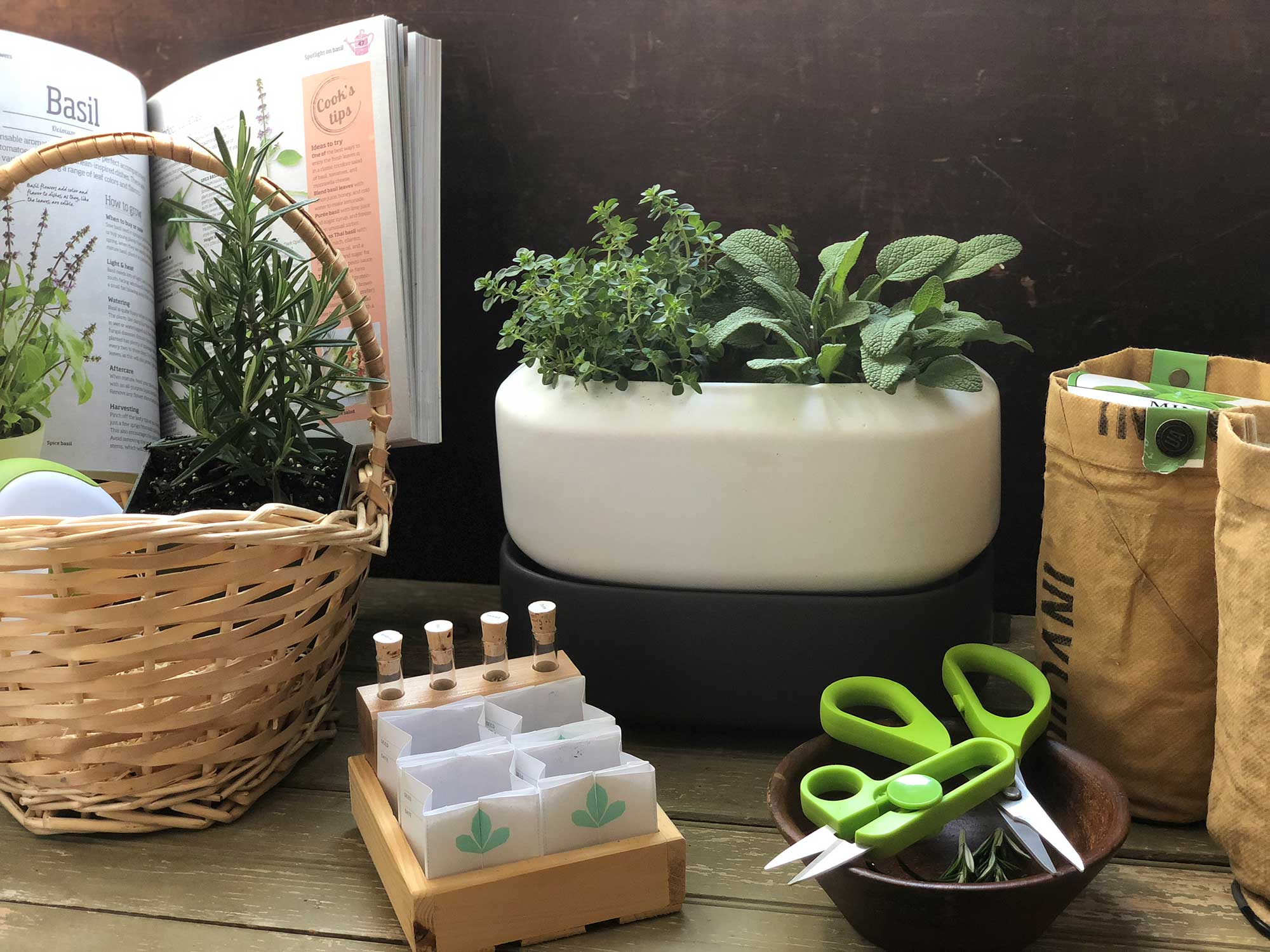These Indoor Herb Gardening Kits Will Completely Change Your Summer Meals