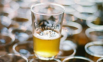 The Contrarian's Guide to Summer Beer