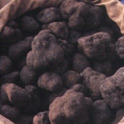 Other Truffles