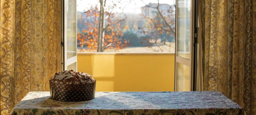 Panettone in an office