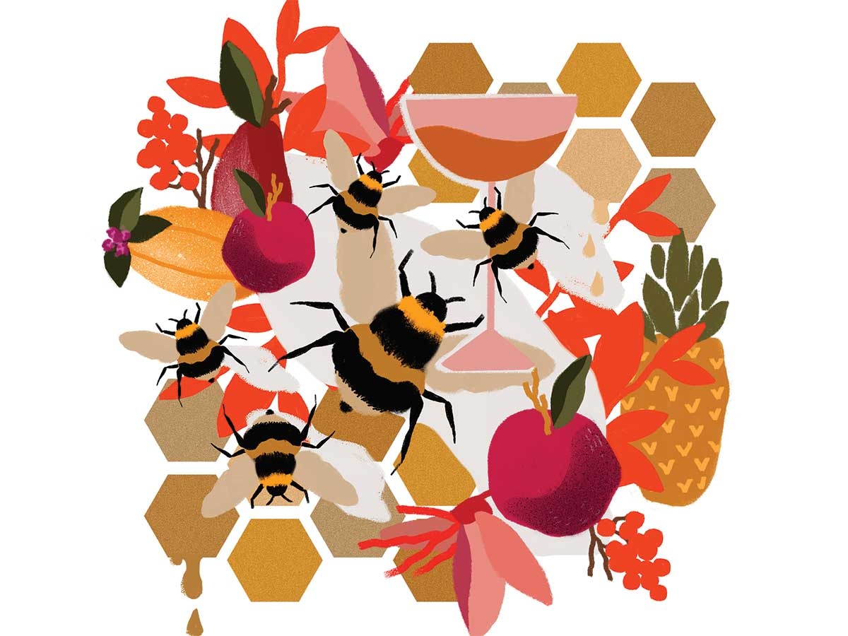 How One Hawaiian Meadery is Helping Save the Islands' Bees