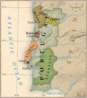 Tasting Notes: Portuguese Wine