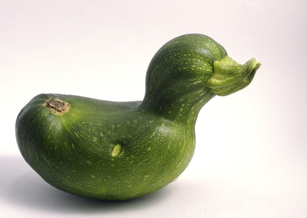 Weekend Reading: Vegetables That Look Like Ducks, Grown-Up Grilled Cheese, Latte Portraits, and More