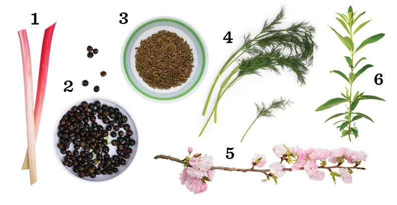 Aquavit ingredients