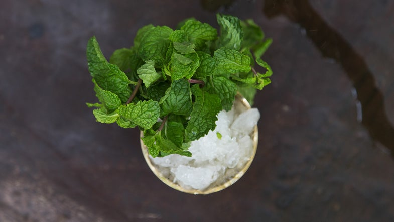 Mint Julep With Rum Float