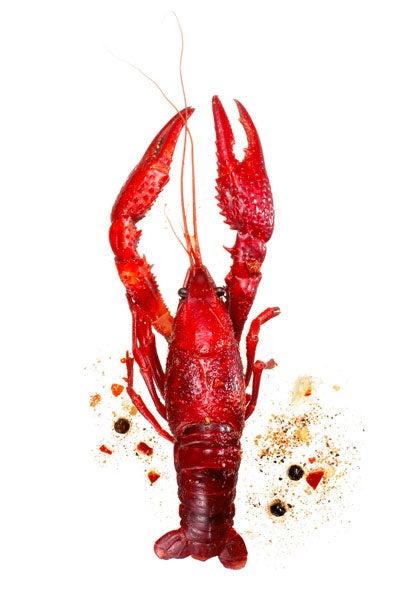 httpswww.saveur.comsitessaveur.comfilesimport2010images2010-127-sv135-crawfish-400×600.jpg