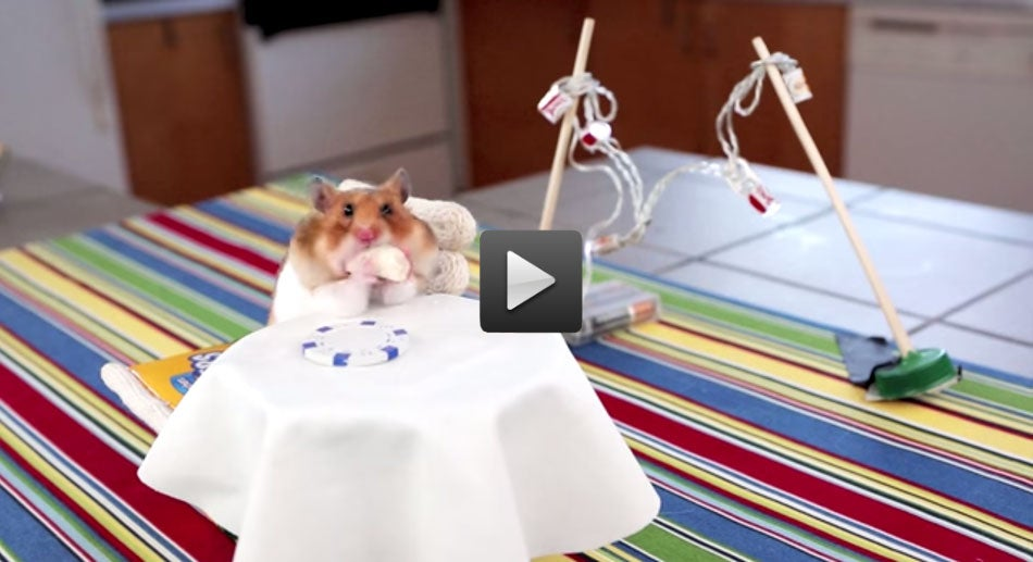 Weekend Reading: A Tiny Hamster Eats Tiny Burritos, Food Rap, and More