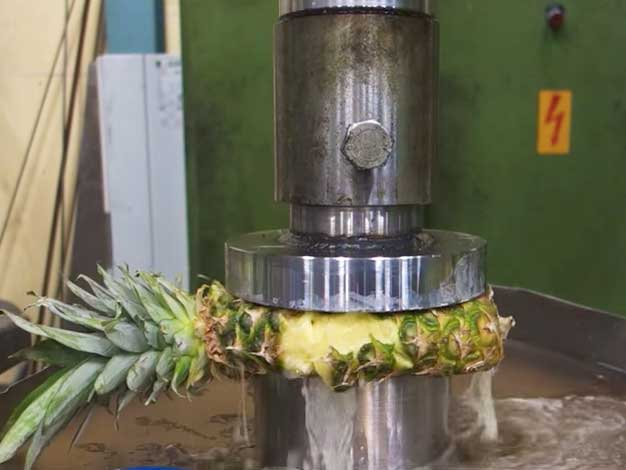 Watch Our Favorite Videos of Super-Specific Food Testing Machines