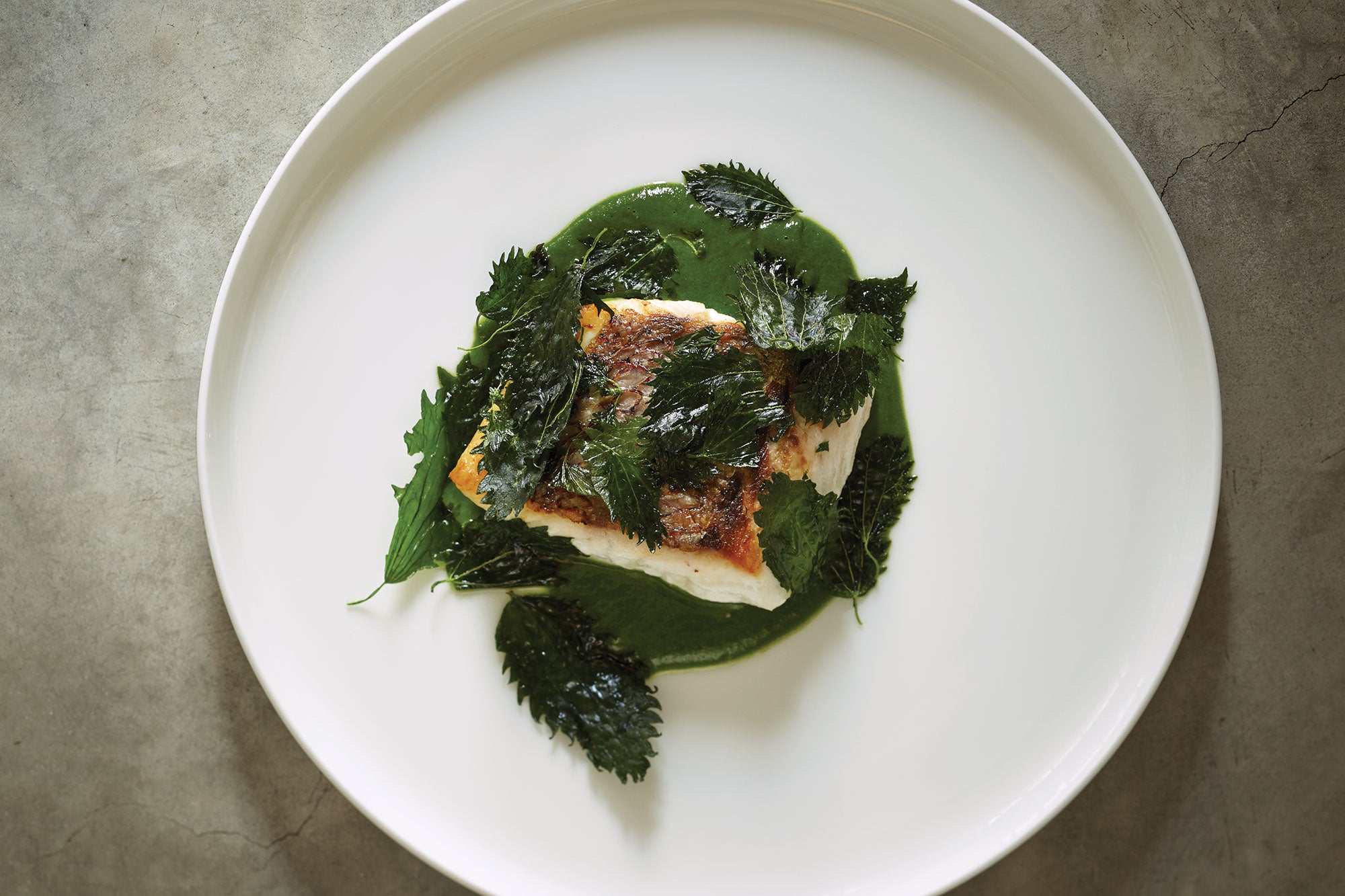 Seared Snapper with Nettle Sauce, Tasmania