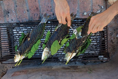 Grilled Sea Bass Wrapped in Fig Leaves (Lavraki Stin Schara)
