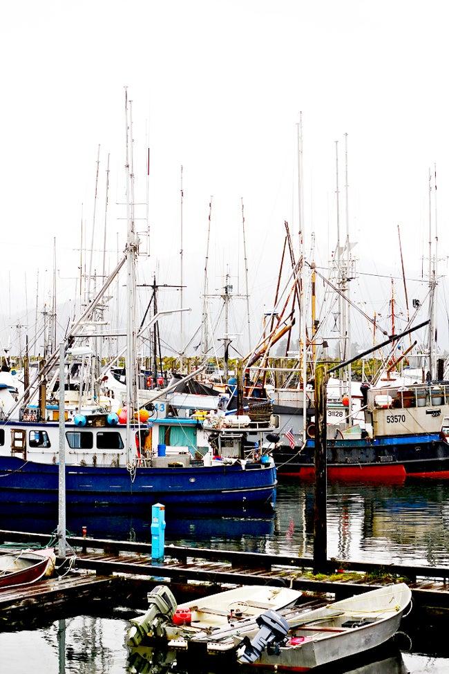 httpswww.saveur.comsitessaveur.comfilesimport2012images2012-107-feature_alaskafishing_650x975.jpg