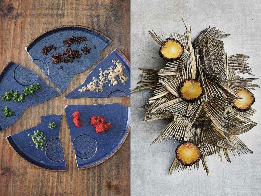Diversidad de quinas (Diversity of Quinoas) | Carachama y yacon (Carachama & Yacon)
