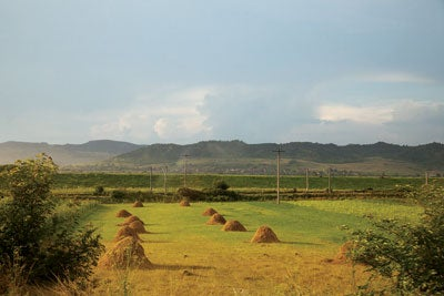 Haystacks in the field outside Miklosvar