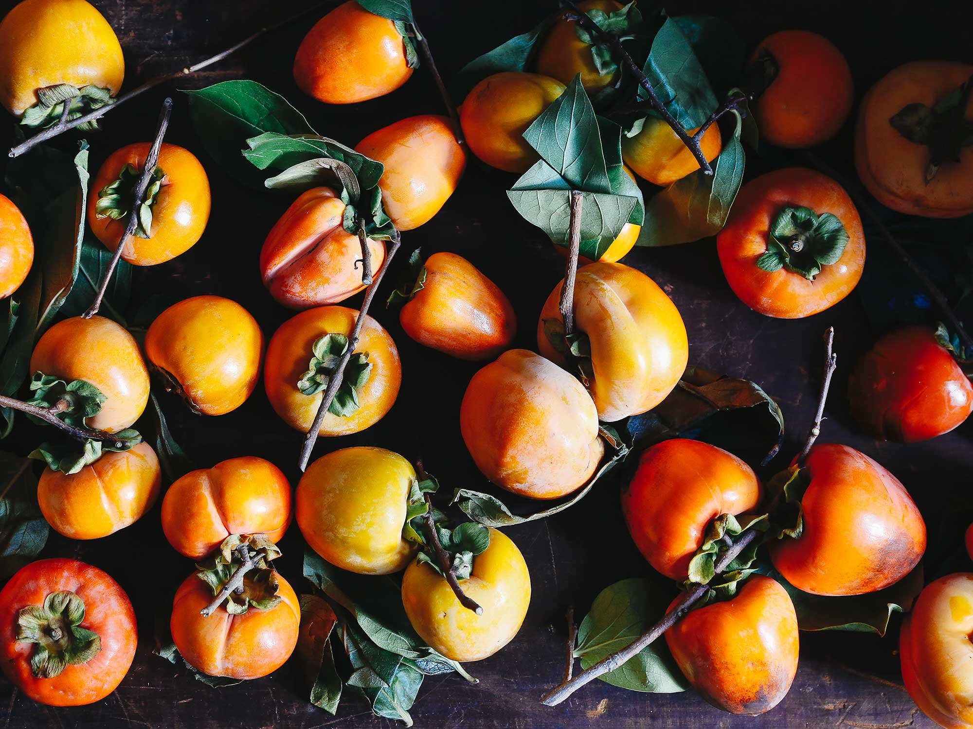 Bounty of persimmons
