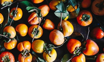 Stop What You're Doing and Eat All the Persimmons You Can