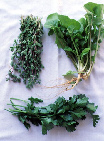 httpswww.saveur.comsitessaveur.comfilesimport2008images2008-03634-Italian_pantry-herbs_5_48028129.jpg