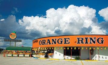 Florida's Citrus Stands