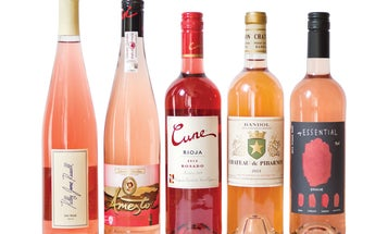 The Pair: The World of Rosé