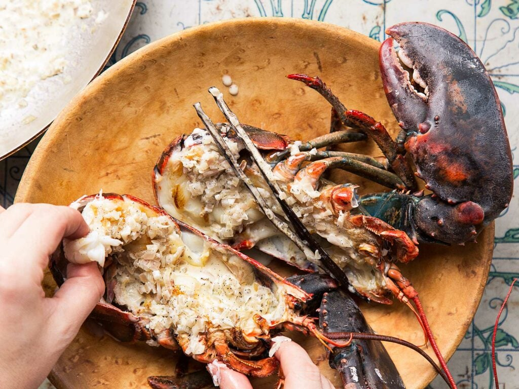 """""""Lobster"""