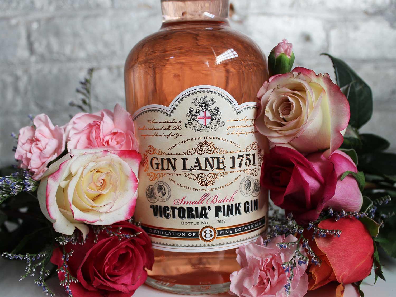 Gin Lane 1751 'Victoria Pink'