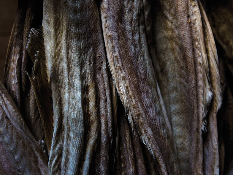 Everyone in the World Loves Dried Cod