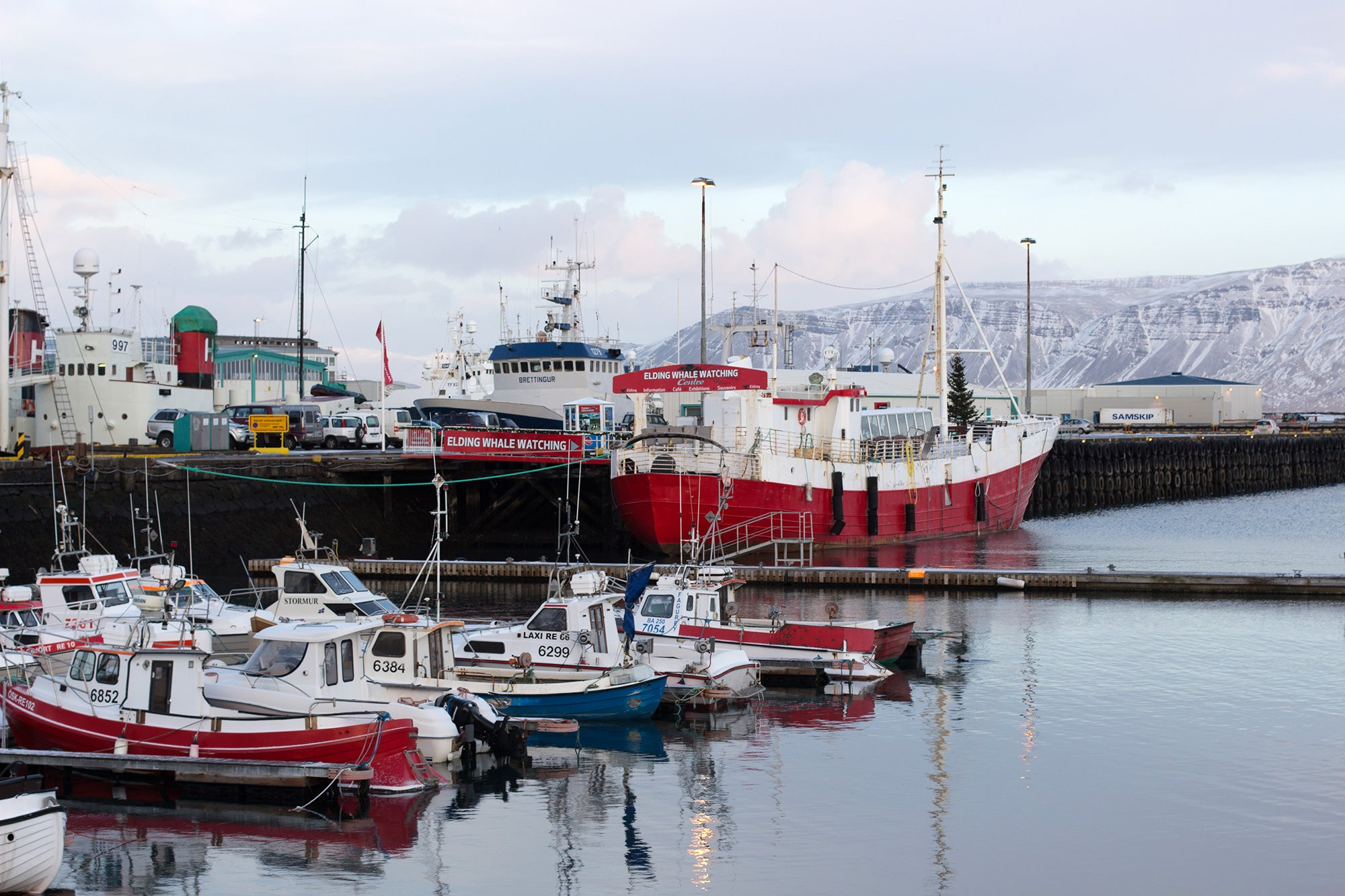 Ships in Iceland